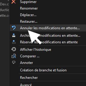 Trucs et astuces pour Visual Studio: Comment ne pas archiver les fichiers non modifiés avec TFS ?