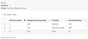 Databricks consultation lignes utilisateur